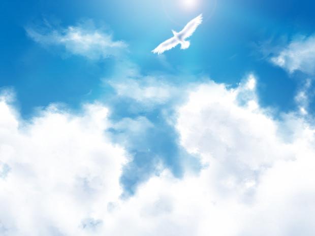 【限定】自由に生きるために必要な3つのエッセンス(メルマガ読者限定)