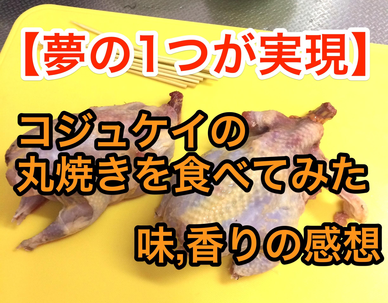 夢の1つ、小綬鶏(コジュケイ)の丸焼きを作って食べてみた!味などの感想