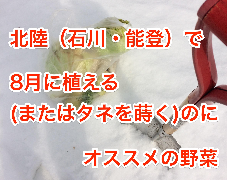 北陸(石川・能登地方)で8月に植えるのにオススメの野菜