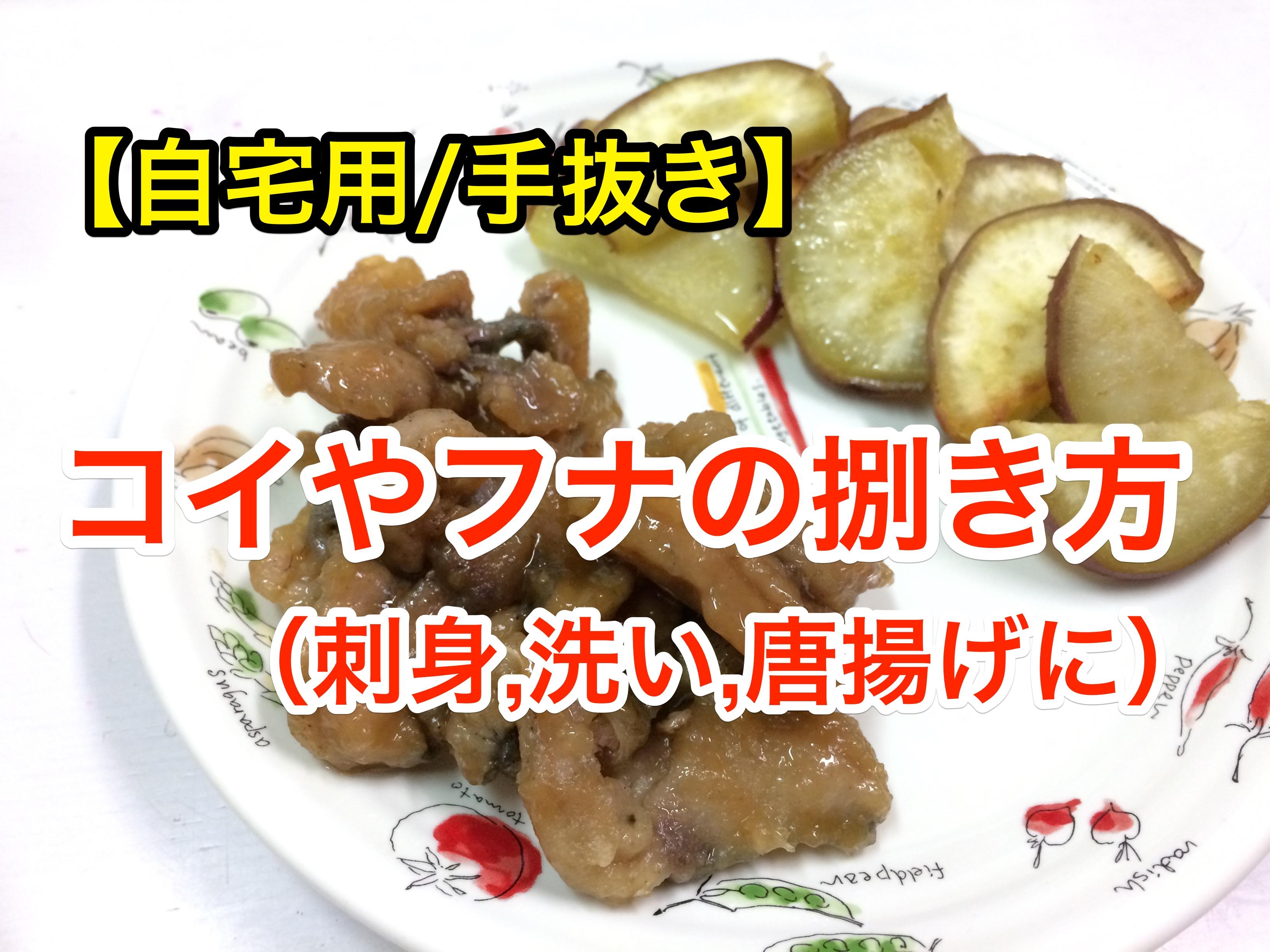 【自宅/手抜き】鯉やフナのさばき方(刺身,洗い,唐揚げに)